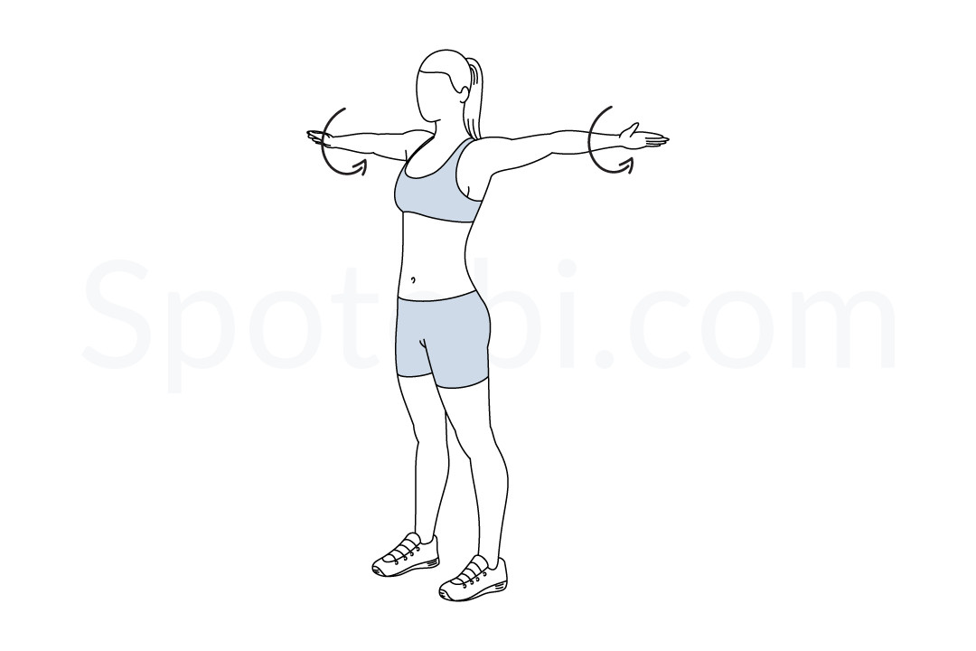 Arm Circles | Illustrated Exercise Guide