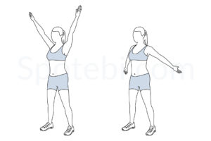 Big arm circles exercise guide with instructions, demonstration, calories burned and muscles worked. Learn proper form, discover all health benefits and choose a workout. http://www.spotebi.com/exercise-guide/big-arm-circles/