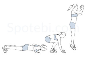 Burpees exercise guide with instructions, demonstration, calories burned and muscles worked. Learn proper form, discover all health benefits and choose a workout. http://www.spotebi.com/exercise-guide/burpees/