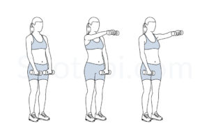 Dumbbell front raise exercise guide with instructions, demonstration, calories burned and muscles worked. Learn proper form, discover all health benefits and choose a workout. http://www.spotebi.com/exercise-guide/dumbbell-front-raise/