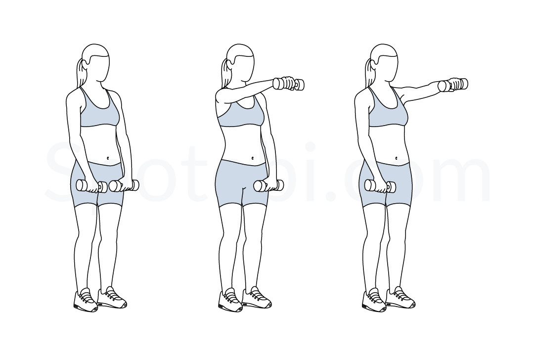 Dumbbell front raise exercise guide with instructions, demonstration ...