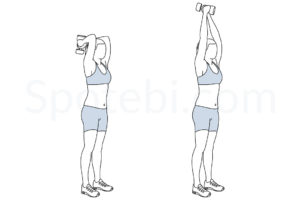 Dumbbell triceps extension exercise guide with instructions, demonstration, calories burned and muscles worked. Learn proper form, discover all health benefits and choose a workout. https://www.spotebi.com/exercise-guide/dumbbell-triceps-extension/