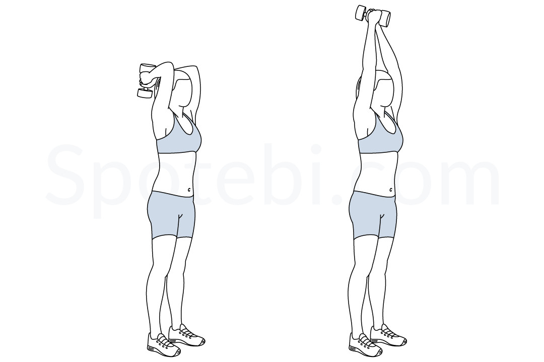 Dumbbell Triceps Extension Illustrated Exercise Guide