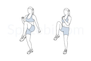High knees exercise guide with instructions, demonstration, calories burned and muscles worked. Learn proper form, discover all health benefits and choose a workout. http://www.spotebi.com/exercise-guide/high-knees/