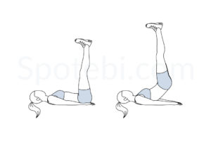 Pulse ups exercise guide with instructions, demonstration, calories burned and muscles worked. Learn proper form, discover all health benefits and choose a workout. http://www.spotebi.com/exercise-guide/pulse-ups/