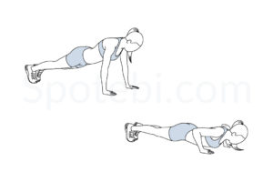 Push up exercise guide with instructions, demonstration, calories burned and muscles worked. Learn proper form, discover all health benefits and choose a workout. https://www.spotebi.com/exercise-guide/push-up/