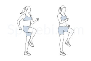 Run in place exercise guide with instructions, demonstration, calories burned and muscles worked. Learn proper form, discover all health benefits and choose a workout. https://www.spotebi.com/exercise-guide/run-in-place/