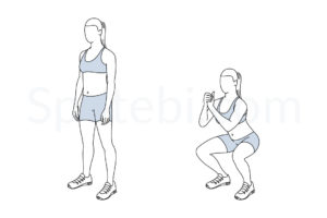 Squat exercise guide with instructions, demonstration, calories burned and muscles worked. Learn proper form, discover all health benefits and choose a workout. https://www.spotebi.com/exercise-guide/squat/