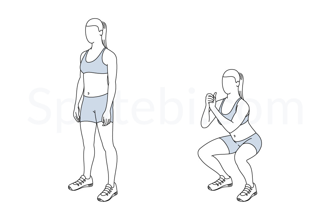Squat | Illustrated Exercise Guide