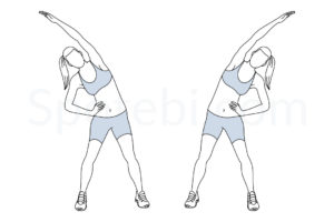 Obliques stretch exercise guide with instructions, demonstration, calories burned and muscles worked. Learn proper form, discover all health benefits and choose a workout. http://www.spotebi.com/exercise-guide/obliques-stretch/