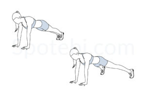 Plank jacks exercise guide with instructions, demonstration, calories burned and muscles worked. Learn proper form, discover all health benefits and choose a workout. https://www.spotebi.com/exercise-guide/plank-jacks/