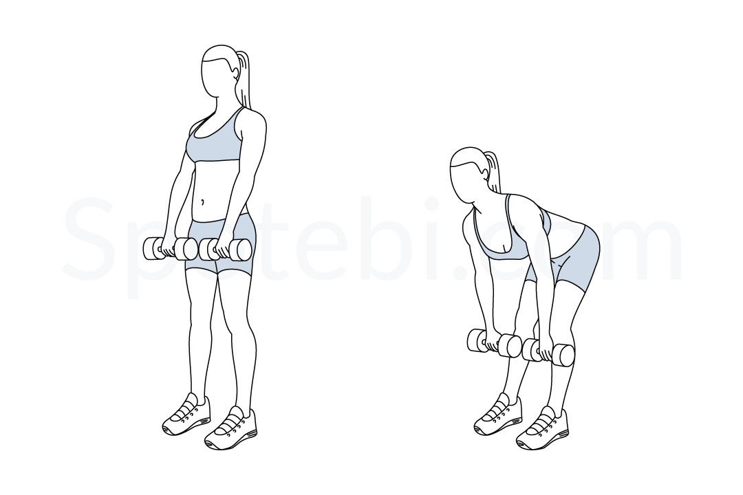 Romanian deadlift exercise guide with instructions, demonstration, calories burned and muscles worked. Learn proper form, discover all health benefits and choose a workout. https://www.spotebi.com/exercise-guide/romanian-deadlift/