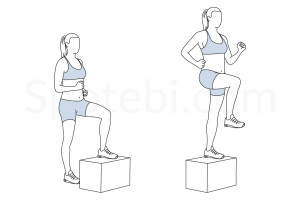 Step up with knee raise exercise guide with instructions, demonstration, calories burned and muscles worked. Learn proper form, discover all health benefits and choose a workout. http://www.spotebi.com/exercise-guide/step-up-with-knee-raise/