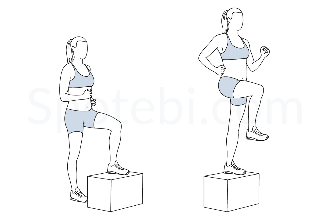 Step up with knee raise exercise guide with instructions, demonstration, calories burned and muscles worked. Learn proper form, discover all health benefits and choose a workout. https://www.spotebi.com/exercise-guide/step-up-with-knee-raise/