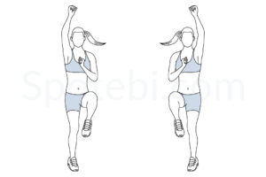 Standing mountain climbers exercise guide with instructions, demonstration, calories burned and muscles worked. Learn proper form, discover all health benefits and choose a workout. https://www.spotebi.com/exercise-guide/standing-mountain-climbers/