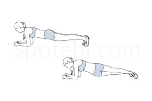 Plank hip dips exercise guide with instructions, demonstration, calories burned and muscles worked. Learn proper form, discover all health benefits and choose a workout. http://www.spotebi.com/exercise-guide/plank-hip-dips/