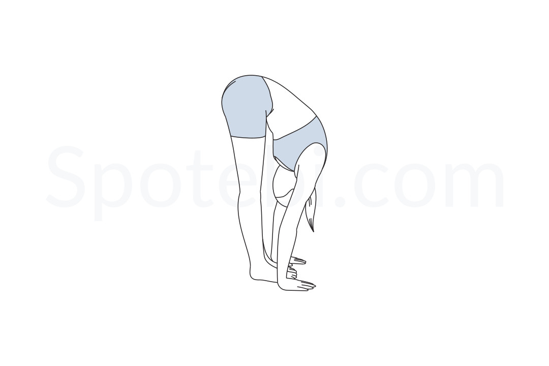 Standing forward bend pose (Uttanasana) instructions, illustration and mindfulness practice. Learn about preparatory, complementary and follow-up poses, and discover all health benefits. https://www.spotebi.com/exercise-guide/standing-forward-bend/