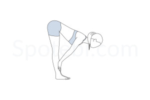 Standing half forward bend pose (Ardha Uttanasana) instructions, illustration and mindfulness practice. Learn about preparatory, complementary and follow-up poses, and discover all health benefits. https://www.spotebi.com/exercise-guide/ardha-uttanasana/