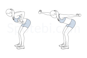 Bent over front back punch exercise guide with instructions, demonstration, calories burned and muscles worked. Learn proper form, discover all health benefits and choose a workout. https://www.spotebi.com/exercise-guide/bent-over-front-back-punch/