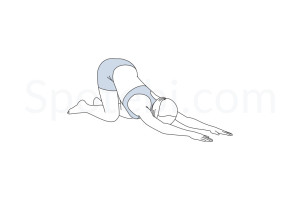 Extended puppy pose (Uttana Shishosana) instructions, illustration and mindfulness practice. Learn about preparatory, complementary and follow-up poses, and discover all health benefits. https://www.spotebi.com/exercise-guide/extended-puppy-pose/