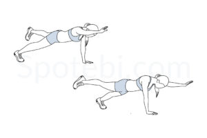 Plank bird dog exercise guide with instructions, demonstration, calories burned and muscles worked. Learn proper form, discover all health benefits and choose a workout. https://www.spotebi.com/exercise-guide/plank-bird-dog/