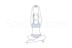 Seated mountain pose (Parvatasana) instructions, illustration and mindfulness practice. Learn about preparatory, complementary and follow-up poses, and discover all health benefits. https://www.spotebi.com/exercise-guide/parvatasana/