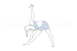 Extended triangle pose (Utthita Trikonasana) instructions, illustration and mindfulness practice. Learn about preparatory, complementary and follow-up poses, and discover all health benefits. http://www.spotebi.com/exercise-guide/utthita-trikonasana/