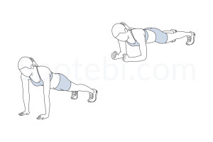 Up down plank exercise guide with instructions, demonstration, calories burned and muscles worked. Learn proper form, discover all health benefits and choose a workout. http://www.spotebi.com/exercise-guide/up-down-plank/