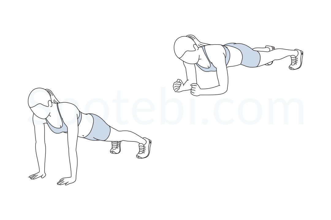 Up down plank exercise guide with instructions, demonstration, calories burned and muscles worked. Learn proper form, discover all health benefits and choose a workout. https://www.spotebi.com/exercise-guide/up-down-plank/