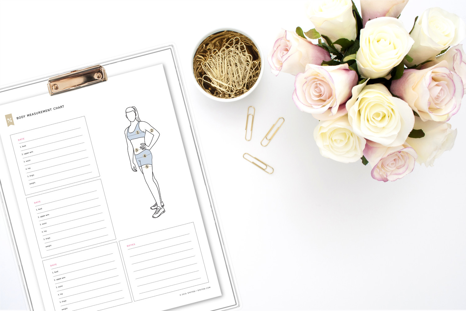 Print our free body measurement chart and measure each body part every 4 weeks. Get inspired by your progress and stay on track with all your fitness goals. https://www.spotebi.com/fitness-tracker/body-measurement-chart/