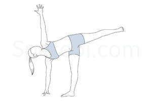 Half moon pose (Ardha Chandrasana) instructions, illustration, and mindfulness practice. Learn about preparatory, complementary and follow-up poses, and discover all health benefits. http://www.spotebi.com/exercise-guide/half-moon-pose/