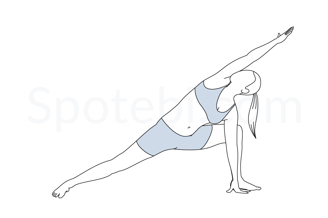 Extended side angle pose (Utthita Parsvakonasana) instructions, illustration, and mindfulness practice. Learn about preparatory, complementary and follow-up poses, and discover all health benefits. https://www.spotebi.com/exercise-guide/extended-side-angle-pose/