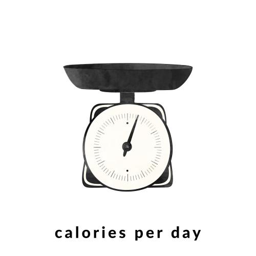 Calorie Intake and BMR Calculator / @spotebi