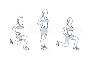 Front and back lunges exercise guide with instructions, demonstration, calories burned and muscles worked. Learn proper form, discover all health benefits and choose a workout. http://www.spotebi.com/exercise-guide/front-and-back-lunges/