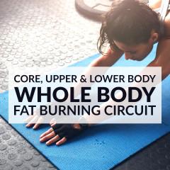 Whole Body Fat Burning Circuit / @spotebi