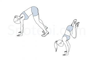 Double leg donkey kicks exercise guide with instructions, demonstration, calories burned and muscles worked. Learn proper form, discover all health benefits and choose a workout. http://www.spotebi.com/exercise-guide/double-leg-donkey-kicks/