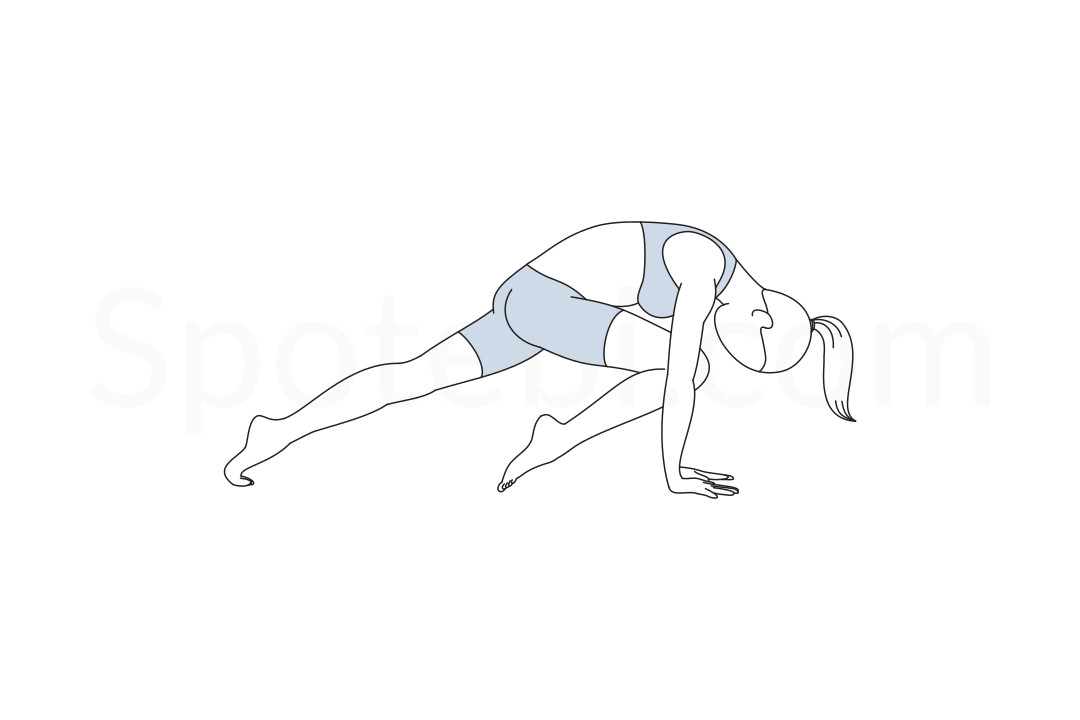 Knee to nose dog pose (Jaanu Naasikaa Adho Mukha Svanasana) instructions, illustration, and mindfulness practice. Learn about preparatory, complementary and follow-up poses, and discover all health benefits. https://www.spotebi.com/exercise-guide/knee-to-nose-dog-pose/