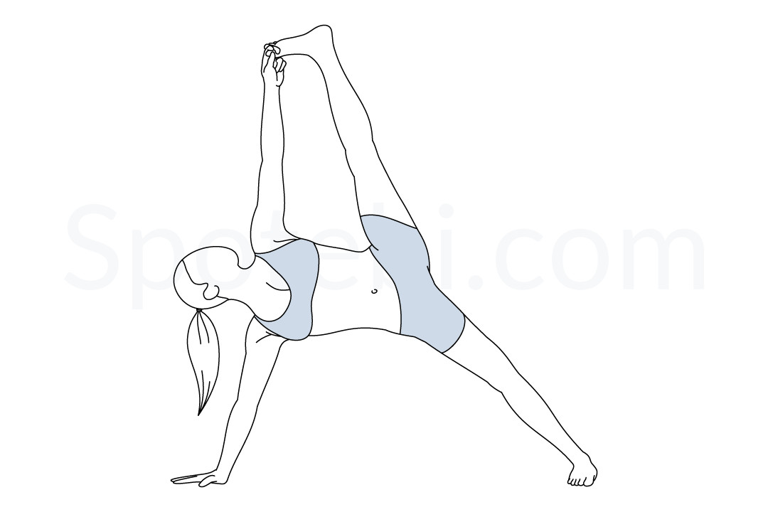 Full side plank pose (Vasisthasana) instructions, illustration, and mindfulness practice. Learn about preparatory, complementary and follow-up poses, and discover all health benefits. https://www.spotebi.com/exercise-guide/full-side-plank-pose/