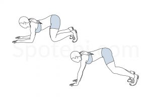 Knee and elbow press up exercise guide with instructions, demonstration, calories burned and muscles worked. Learn proper form, discover all health benefits and choose a workout. https://www.spotebi.com/exercise-guide/knee-and-elbow-press-up/