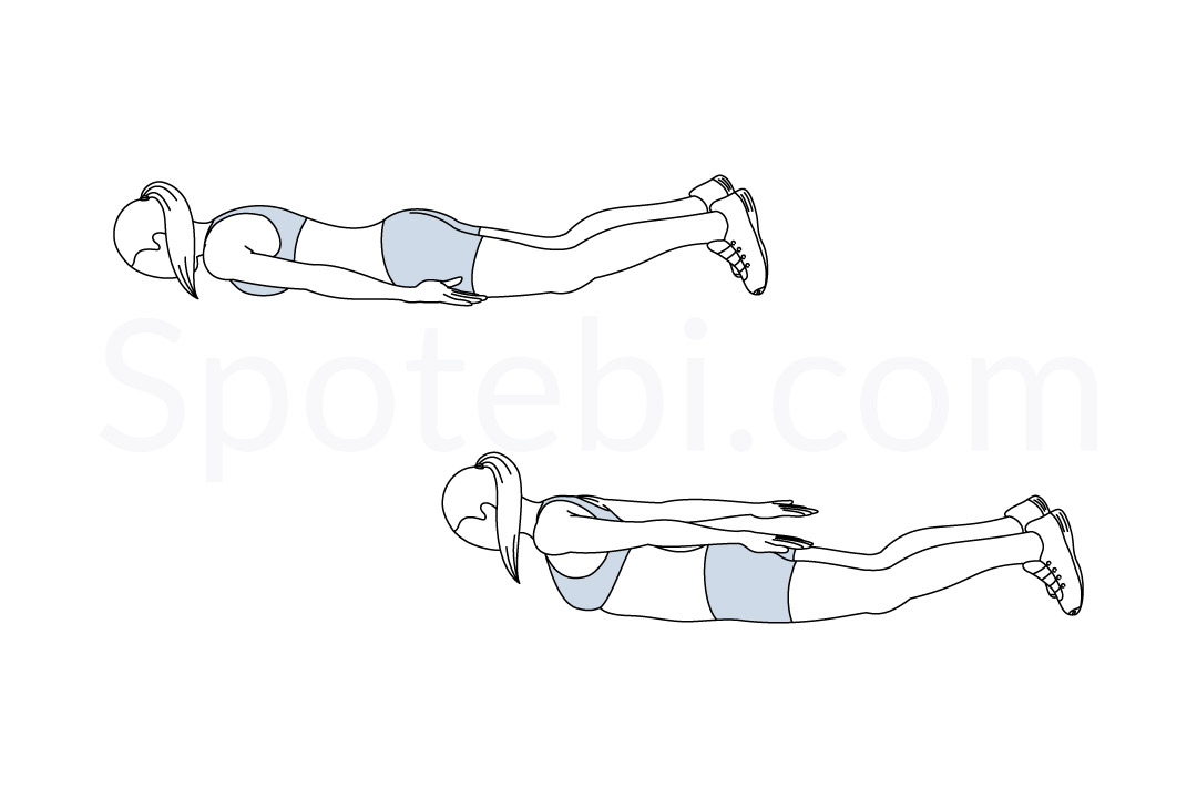 Prone back extension exercise guide with instructions, demonstration, calories burned and muscles worked. Learn proper form, discover all health benefits and choose a workout. https://www.spotebi.com/exercise-guide/prone-back-extension/