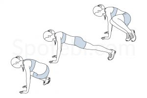 Ski abs exercise guide with instructions, demonstration, calories burned and muscles worked. Learn proper form, discover all health benefits and choose a workout. https://www.spotebi.com/exercise-guide/ski-abs/