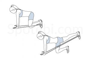 Band donkey kicks exercise guide with instructions, demonstration, calories burned and muscles worked. Learn proper form, discover all health benefits and choose a workout. https://www.spotebi.com/exercise-guide/band-donkey-kicks/