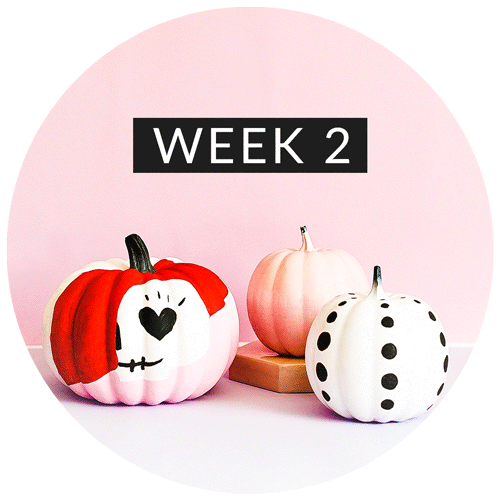 6-Week Lifestyle & Fitness Challenge